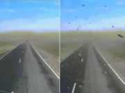 """Thế giới - Kinh hãi chạy xe giữa """"bão"""" châu chấu ở Nga"""