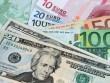 Doanh nghiệp có dư nợ bằng EUR có thể lỗ tỷ giá