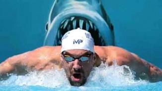 Huyền thoại Michael Phelps đua với cá mập: Khán giả sốc và phẫn nộ