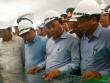 Thủ tướng Nguyễn Xuân Phúc thị sát tại Formosa