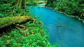 Giải mã màu nước xanh bí ẩn của dòng sông ở Costa Rica