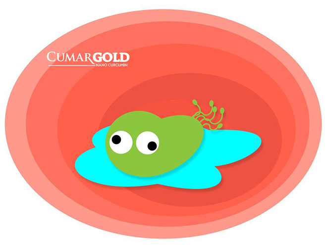 Vi khuẩn HP kháng thuốc, nguy hiểm nhưng vẫn có cách ứng phó - 1