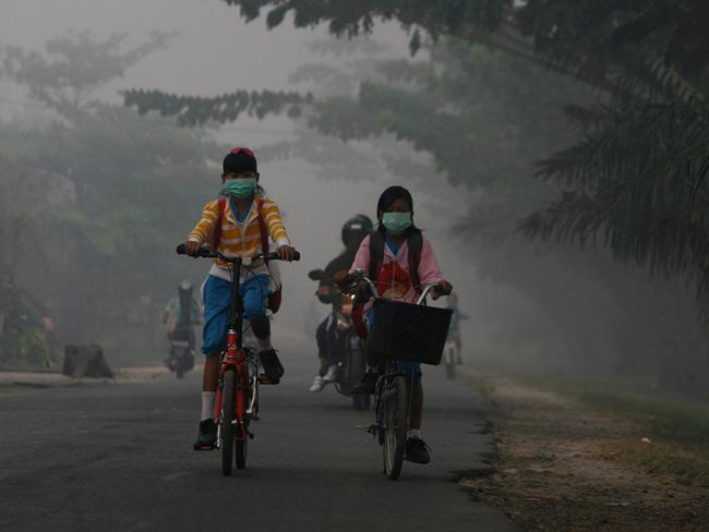Mức độ ô nhiễm không khí ở tỉnh Kalimantan, miền Trung Indonesia ngày càng gia tăng trong những năm gần đây. Vì vậy, học sinh phải đạp xe đến trường vượt qua những con đường khói bụi dày đặc.