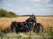 Thế giới xe - Harley-Davidson Forty-Eight độ phong cách viễn tưởng