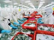 Thị trường - Tiêu dùng - Mỹ tăng thuế chống bán phá giá đối với tôm Việt Nam