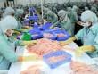 Mất cơ hội xuất khẩu 100 tấn mỡ cá chỉ vì thủ tục