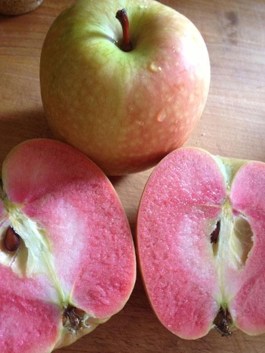 """Mê mẩn loại táo Mỹ lạ """"xanh vỏ - hồng lòng"""" siêu dễ thương - 8"""