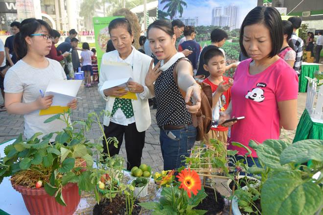 Ngày hội nông trại xanh Phú Mỹ Hưng lần 2 năm 2017 - 1