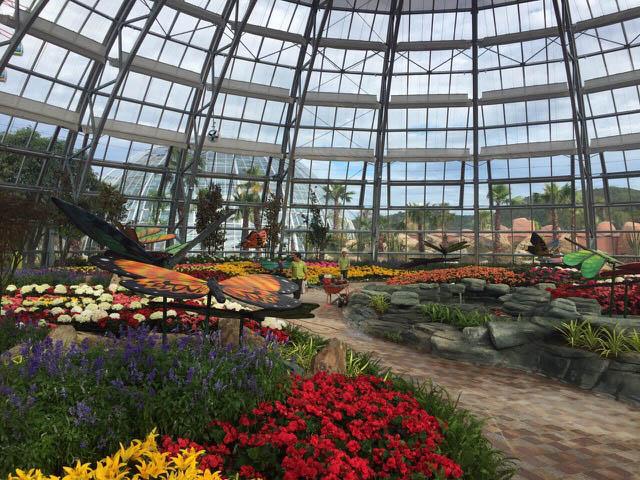 Vinpearl Land mở cửa đồi Vạn Hoa - công viên thực vật 5 châu độc đáo nhất Việt Nam - 3