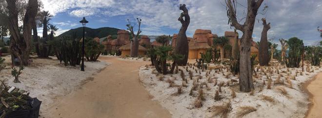 Vinpearl Land mở cửa đồi Vạn Hoa - công viên thực vật 5 châu độc đáo nhất Việt Nam - 6
