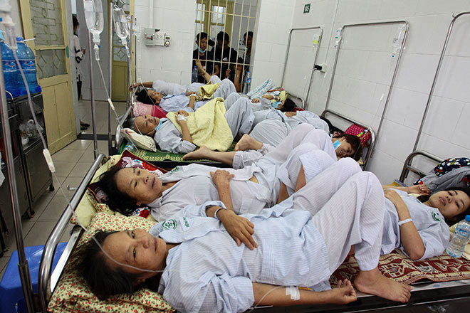 Người mắc sốt xuất huyết ồ ạt nhập viện, hội trường thành phòng bệnh - 2