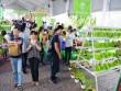 Ngày hội nông trại xanh Phú Mỹ Hưng lần 2 năm 2017