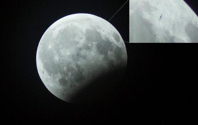 """Phát hiện vật thể lạ trong ảnh """"gấu ăn trăng"""" ở Hà Nội - 1"""