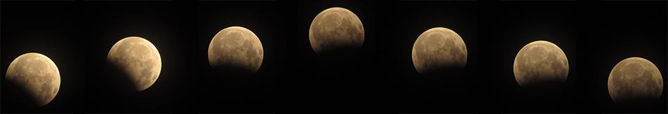 """Phát hiện vật thể lạ trong ảnh """"gấu ăn trăng"""" ở Hà Nội - 5"""