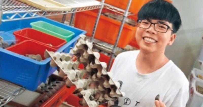 Sinh viên Đài Loan nuôi gián kiếm gần 7000 đô mỗi tháng - 1