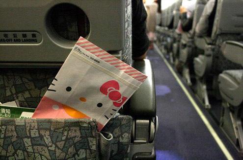 Khám phá máy bay Hello Kitty dễ thương nhất thế giới - 16