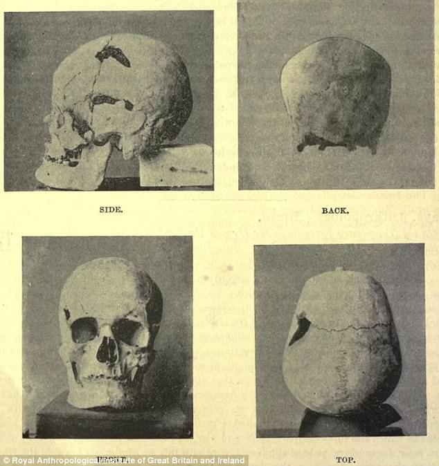 Phát hiện hài cốt hoàng đế Ai Cập có gene khổng lồ - 1