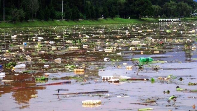 Phát hoảng khi thấy hồ Xuân Hương mộng mơ như bể chứa rác - 1