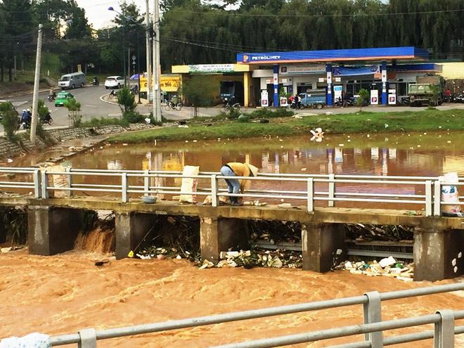 Phát hoảng khi thấy hồ Xuân Hương mộng mơ như bể chứa rác - 6