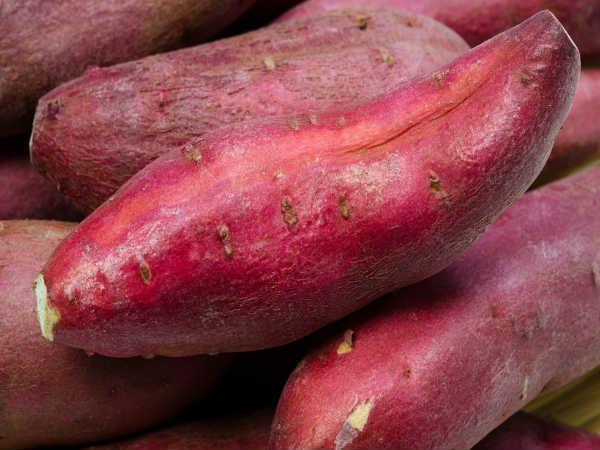 Top thực phẩm giúp vùng tam giác phụ nữ khỏe mạnh và không có mùi - 2