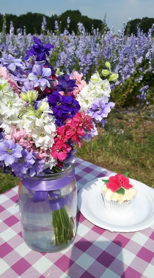 Ngỡ ngàng vẻ đẹp thiên đường hoa mùa hè chỉ mở cửa 7 ngày mỗi năm - 8