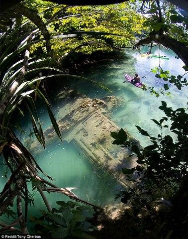 Kì lạ máy bay Thế chiến 2 còn nguyên vẹn dưới biển - 1