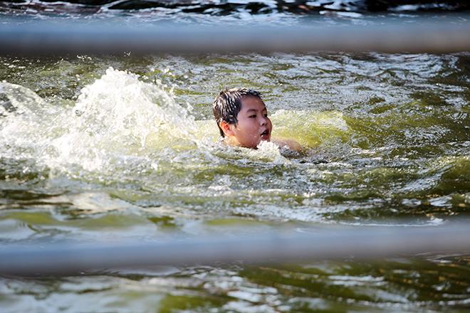Ao tù hoá bể bơi xanh mát vạn người mê ở Hà Nội - 2