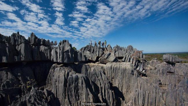 Kỳ quan rừng đá ít người có thể tới ở Madagascar - 7