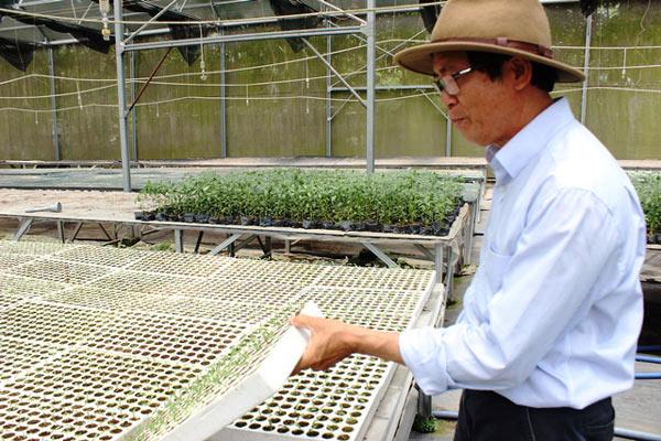 Chuyện lạ có thật: Thu chục tỷ đồng mỗi năm nhờ trồng ớt...lấy hạt - 4