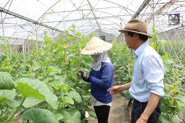 Chuyện lạ có thật: Thu chục tỷ đồng mỗi năm nhờ trồng ớt...lấy hạt - 5