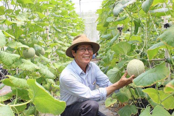 Chuyện lạ có thật: Thu chục tỷ đồng mỗi năm nhờ trồng ớt...lấy hạt - 7