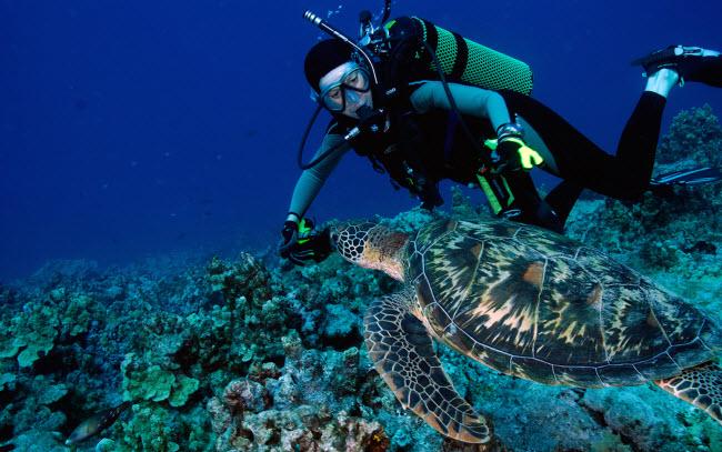 10 lý do khiến đảo Guam trở thành điểm du lịch hấp dẫn - 1