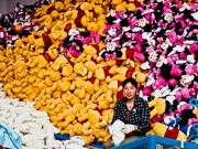 """Đột nhập công xưởng sản xuất thú nhồi bông """"khủng"""" nhất nhì Trung Quốc"""