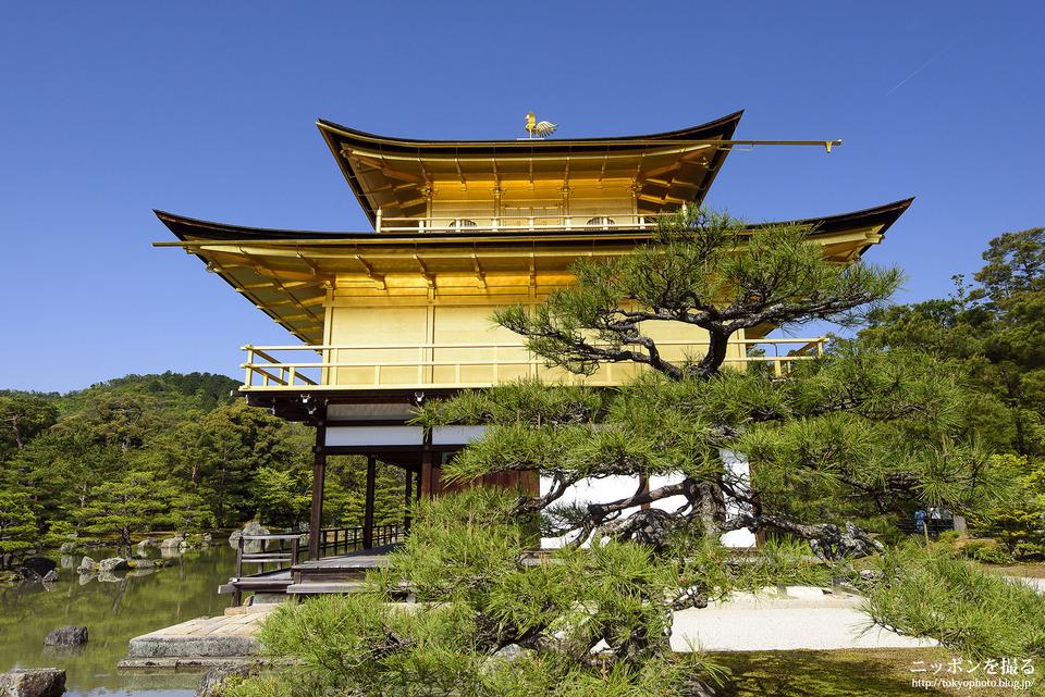 Choáng ngợp ngôi chùa được dát bằng vàng thật ở Nhật Bản - 3