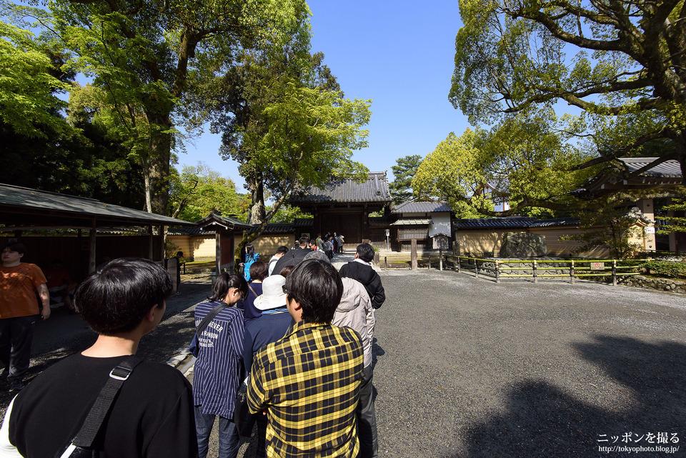 Choáng ngợp ngôi chùa được dát bằng vàng thật ở Nhật Bản - 8