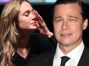""""""" Angelina Jolie và Brad Pitt tái hợp """"  chỉ là tin vịt?"""