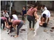 Cô gái bị lột đồ không tố cáo, nhóm người đánh ghen có thoát án phạt?