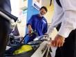 Xăng dầu đồng loạt tăng giá trong ngày khai giảng năm học mới