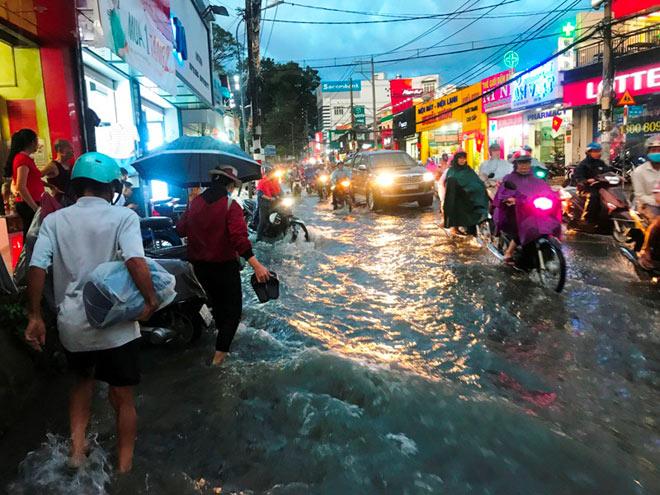 Cổ thụ đè sập 4 căn nhà ở Sài Gòn, 2 người mắc kẹt - 8