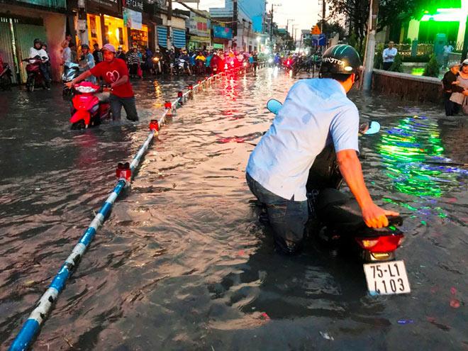 Cổ thụ đè sập 4 căn nhà ở Sài Gòn, 2 người mắc kẹt - 5