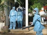 Hà Nội yêu cầu làm rõ thông tin thuốc diệt muỗi giả