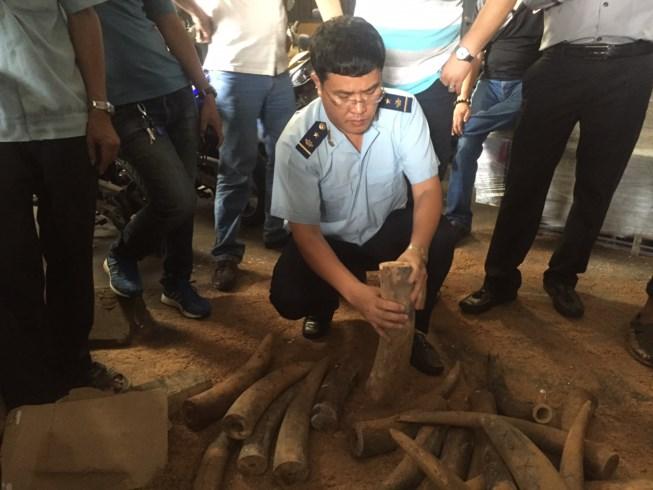 Phát hiện hơn 1.000 kg ngà voi núp trong... thùng phuy - 1