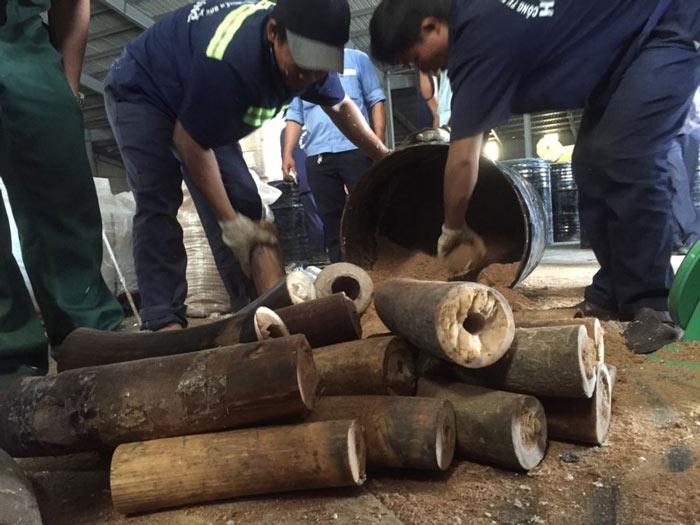 Phát hiện hơn 1.000 kg ngà voi núp trong... thùng phuy - 4