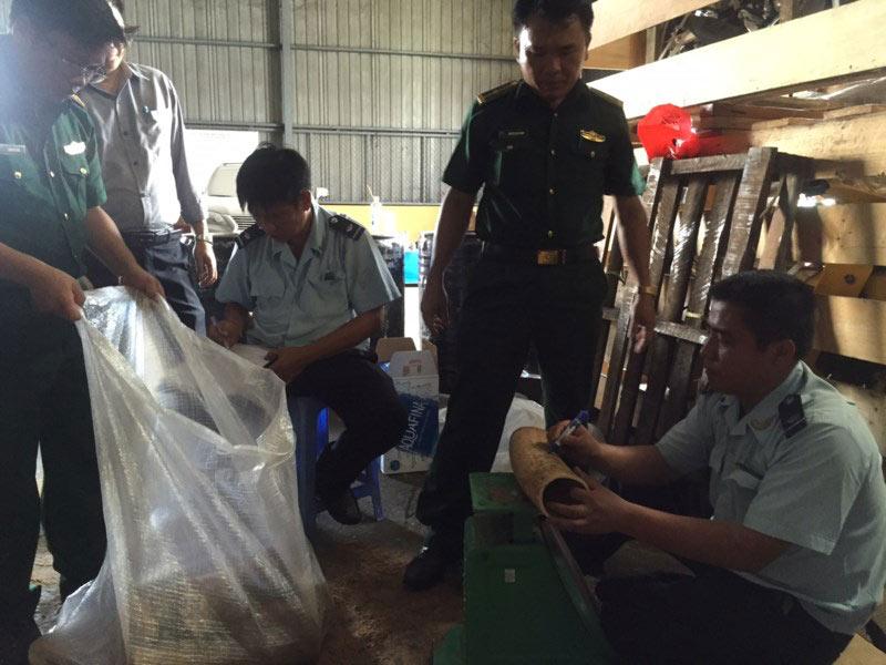 Phát hiện hơn 1.000 kg ngà voi núp trong... thùng phuy - 5