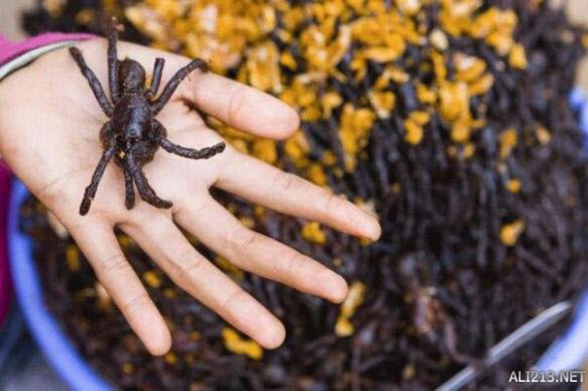 Nhện chiên của Campuchia: Loài nhện màu đen, có lông dài và có độc này có tên gọi là Tarantula. Chúng thường sống trong các lỗ sâu khoảng nửa mét. Người Campuchia chế biến món này bằng cách thêm hành, muối và một số gia vị khác, sau đó chiên ngập dầu, vậy là chúng ta đã có một món ăn vừa thơm vừa giòn cực kỳ ngon.