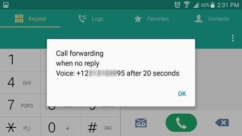 6 mã bí mật kích hoạt chức năng ẩn trên điện thoại - 6