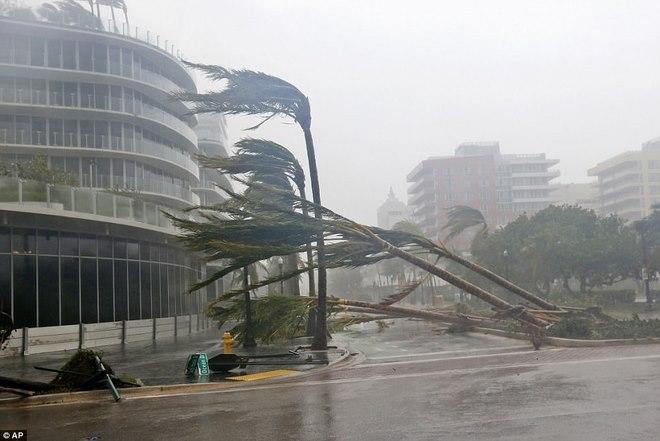 """Siêu bão """"quái vật"""" Irma đổ bộ vào Mỹ, sóng cao 5 mét tạt bờ - 3"""