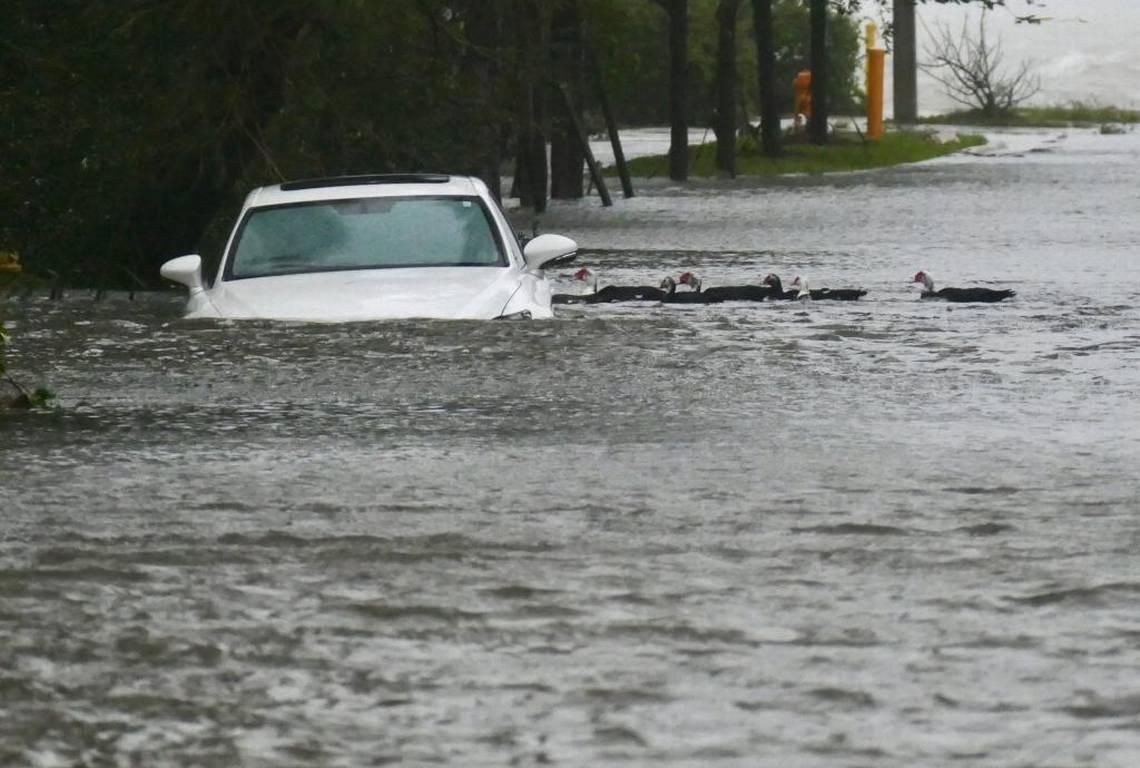 """Kinh hãi cảnh siêu bão Irma """"nhấn chìm"""" thành phố Mỹ - 1"""
