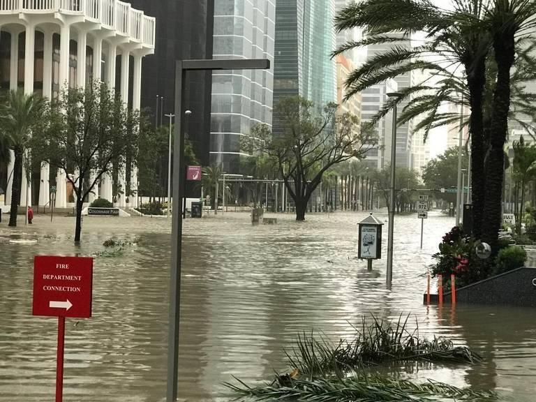 """Kinh hãi cảnh siêu bão Irma """"nhấn chìm"""" thành phố Mỹ - 2"""