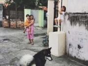Tranh vui - Nếu không bắt chó thả rông, sẽ bắt gặp cảnh này